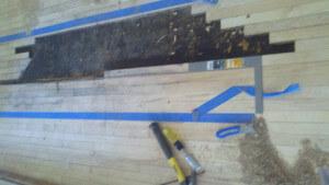 removing damaged hardwood